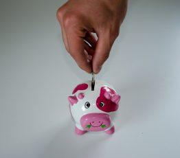 Riester Versicherung - Sparschwein